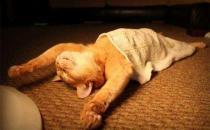 成年人睡觉流口水有什么危害?