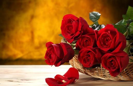 玫瑰花保存小妙招