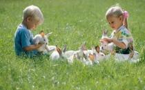不同气质宝宝 不同教养策略