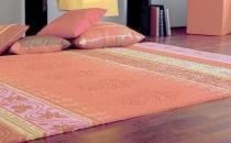地毯的尘土怎么清洗