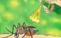 秋季蚊子毒?教你如何有效防蚊