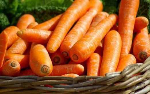 胡蘿卜裡有哪些可以防癌的物質