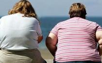 肥胖孕妇的饮食安排 西洋参炖鸡汤有助养胎