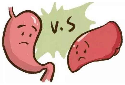 脾胃虚弱的症状表现及调理 舌头有厚厚的白色舌苔