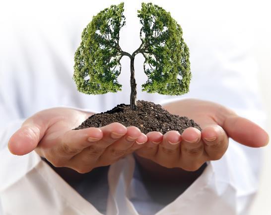 肺不好怎么养护 男人养肺方法及护肺饮食推荐