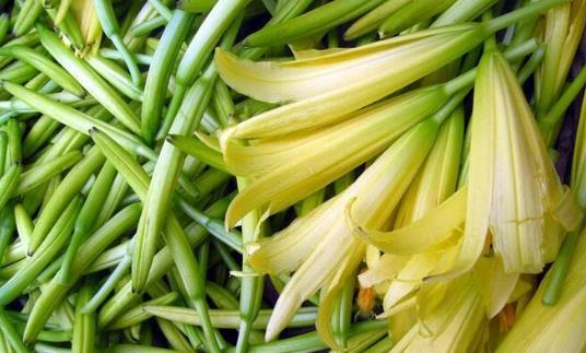 十种没煮熟蔬菜比砒霜毒 要采用下列健康吃法