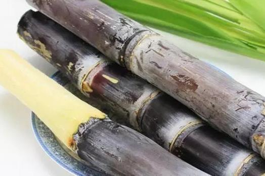 甘蔗的饮食禁忌 霉变甘蔗中毒发病急 红心甘蔗赛砒霜