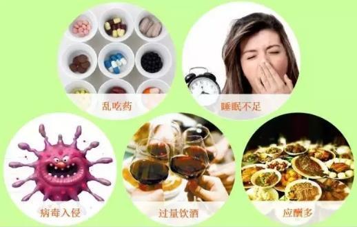 常喝枸杞中药茶饮 受损肝脏逐渐变干净