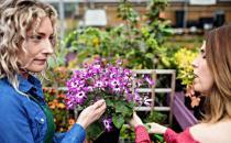 细数家庭花卉生长期和休眠期修剪最佳时间及方法