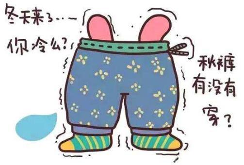 秋裤是什么