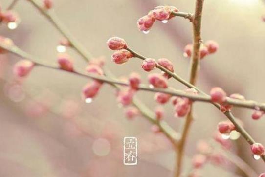 2019年立春是农历几月几日 2019年立春时间