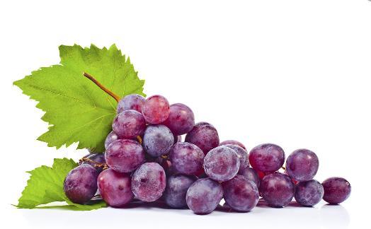 春季什么水果养胃 选择这四种让肠胃安心