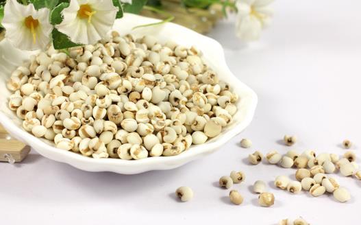 薏米吃对了除湿益气,试试这几个薏米的食疗方