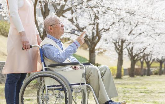 老人胃口不好消瘦 健脾开胃是重点健脾要吃这些