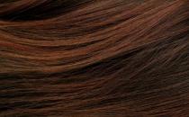 头发枯燥脱发怎么 常吃这些物头发乌黑柔顺