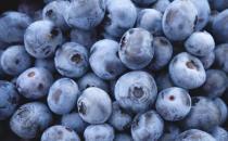 想要美容养颜改善睡眠 选择以下蓝莓食谱就对了