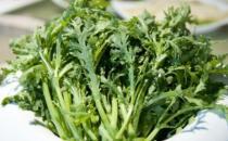将炒青菜改为水煮青菜 烹调蔬菜也有小技巧
