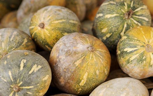 南瓜耐久營養價值高 制作不同料理南瓜的選擇也有差異