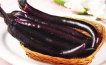 茄子不但营养好 其果实茄蒂和茄子根都可药用