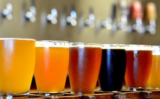 经常饮用啤酒能保持人体骨骼强健 啤酒的种类知多少