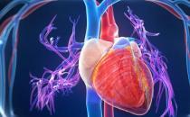 人各部位衰老时间段不一 学会针对不同器官进行保养