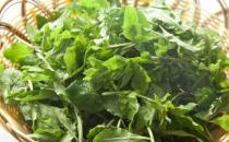 野菜七头一脑最全攻略 教你野菜做法大全养生又健康