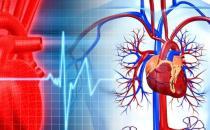 最佳血管养护时间表 养好血管健康更长寿