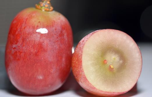适合孕妈妈食用的水果 据孕期的不同阶段来选择