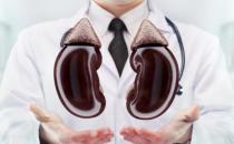 男性早起疲惫说明肾脏出问题 喝酒太多增加肾脏负担
