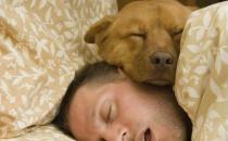并不是睡得越多就越好 熬夜以后在白天补觉是否有用