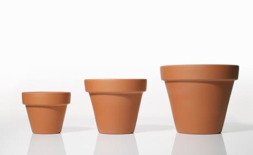 养花时花盆大小和深浅的选择 教你在养花路上少走弯