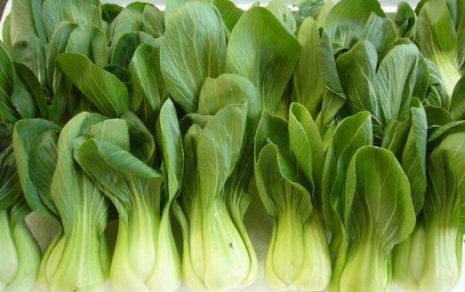吃错蔬菜等于吃垃圾 吃蔬菜的禁忌