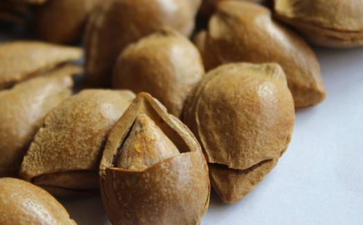 苦杏仁和甜杏仁的区别 食用过量对人体产生危害