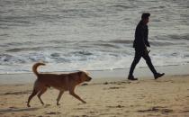 散步可以让身体放松强身健体 散步的讲究