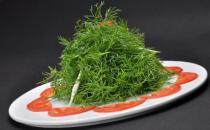 茴香价格便宜营养并不少 茴香功效多多常吃有益健康