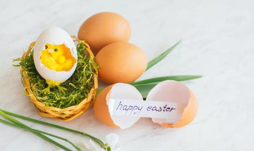 雞蛋殼的用處多多 合理利用雞蛋殼變廢為寶