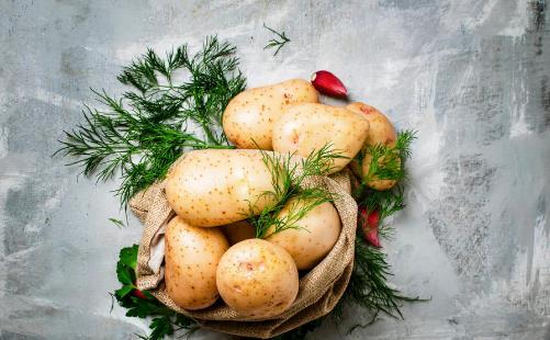 注意!误食这些蔬菜可能会中毒我们的一日三餐中总是缺少