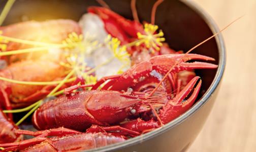 小龙虾好吃也要注意防病 小龙虾的功效与作用分析