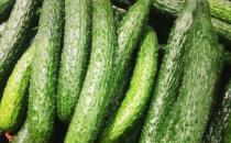 黄瓜可以提高人体免疫功能 细数黄瓜14大好处