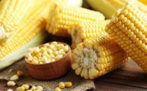 煮玉米的时候加点它 营养美味还能减肥