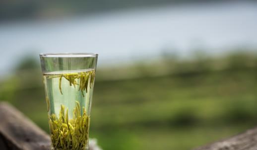 长期喝绿茶的好处 有助于抑制心血管疾病