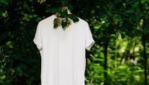 保养白T恤的小妙招 白色衬衫T恤发黄如何洗白