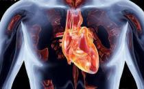 心肺好更健康更长寿 能够促进心肺功能的运动