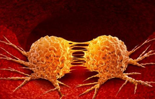 病从口入吃了容易致癌的食物 减少致癌物质的接触