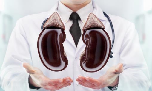出现4个症状可能是你肾不好 肾气不足的补肾食疗方