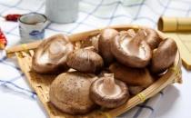 多吃香菇提高免疫力防感冒 干鲜香菇处理方式各不同