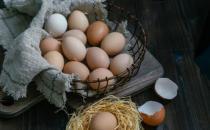 新鲜鸡蛋保存小诀窍 吃鸡蛋的日常注意事项
