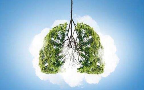 容易伤肺的十种职业 根据肺的生理特点来养护