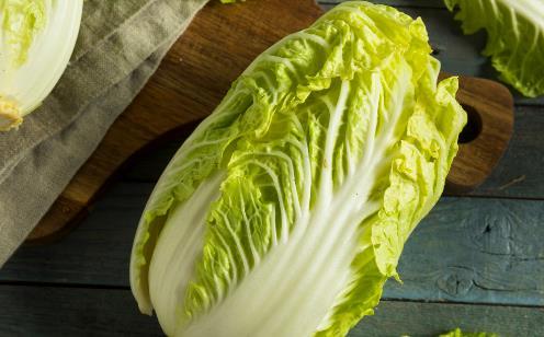 挑选大白菜时菜叶上长了小黑点 这样的白菜能不能吃