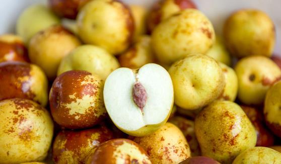 冬枣是凉性还是温性的 常吃可补充微量元素解酒保肝